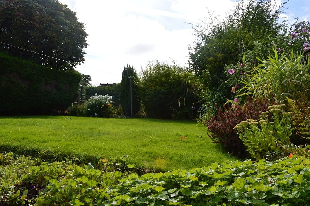 This is our new back yard. I think of it as the 'just the right size garden'.